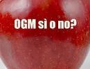 OGM-sì-no