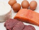 alimenti-origine-animale
